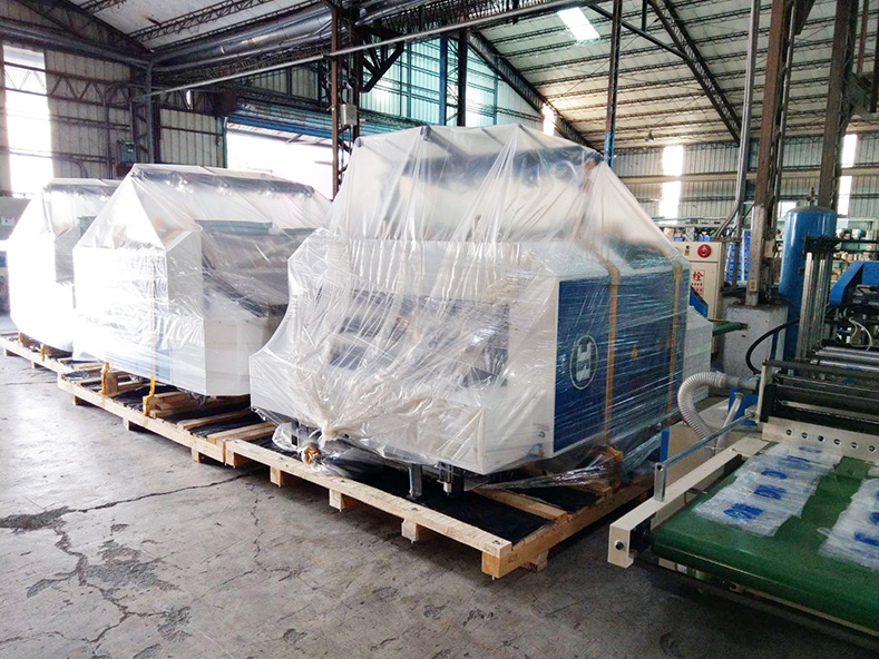 Russian customers add 4 more DIPO bag making machines.